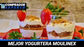 Mejor Yogurtera Moulinex