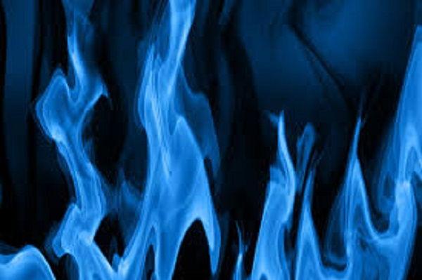 Qué Estufa de Gas Azul Comprar